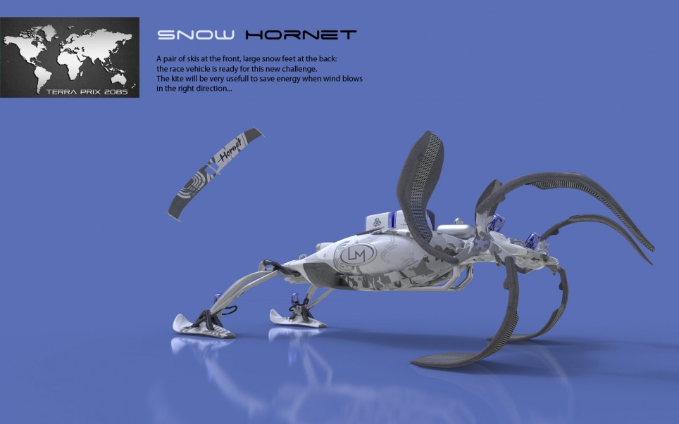 snow-hornet-back
